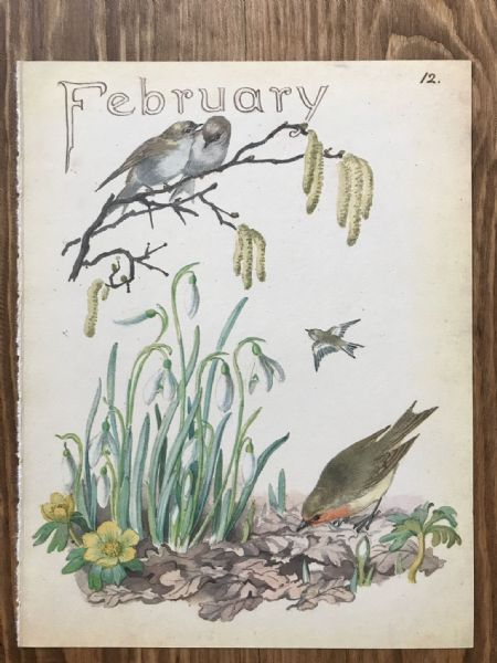 February - Country Diary of an Edwardian Lady - Book Page -